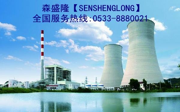 循环水凯发k8手机SS715【电厂专用】电厂应用实例