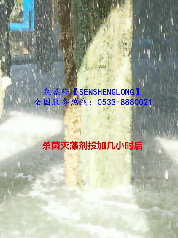 杀菌灭藻剂非氧化性SM310产品应用