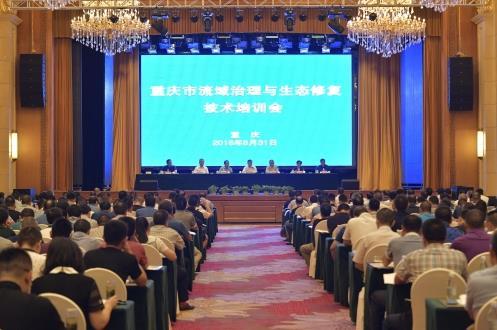 重庆市邀请各地专家为水环境保护支招