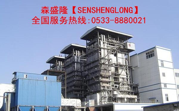 阻垢分散剂SG830【锅炉专用】产品锅炉阻垢应用